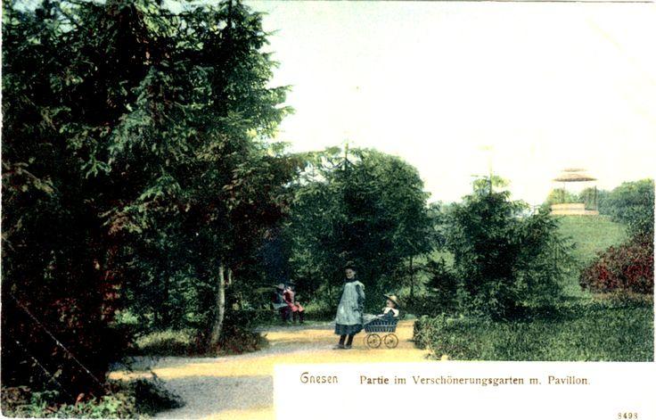 Czy wiecie, który park, w okresie międzywojennym, był jednym z największych parków publicznych w Polsce? Był nim, założony w 1898 r., park miejski w Gnieźnie (obecnie Park Miejski im. Władysława Andersa). Zresztą w owym czasie samo Gniezno było jednym z najbogatszych w zieleń miast w kraju. Fragment parku z altaną na wzgórzu został uwieczniony na wydanej w 1904 r., przez wydawnictwo Reinicke& Rubin, pocztówce.