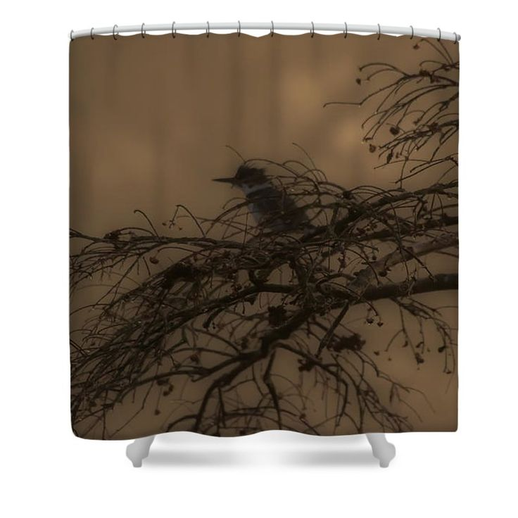Silhouette Shower Curtain featuring the photograph Silhouetted King Fisher by Scott Hervieux