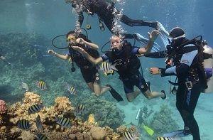 Great Barrier Reef Beginner Dive