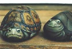 Turtle Painted Rocks - Bing Images #stones #rocks