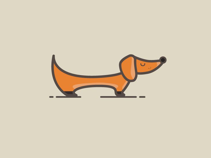 Mini Dachshund by Florin Diaconu #Design Popular #Dribbble #shots