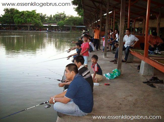pemula mancing yang belum paham akan tanda umpan kita di makan ikan. Langsung saja berikut tanda kail para pemancing tersambar oleh ikan.