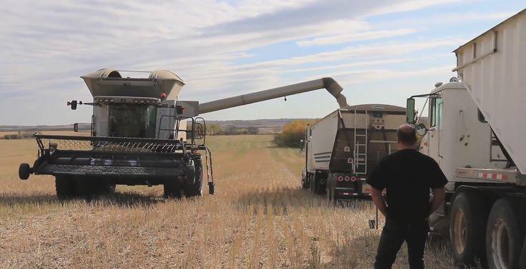 Saskatchewan Highlights in Video