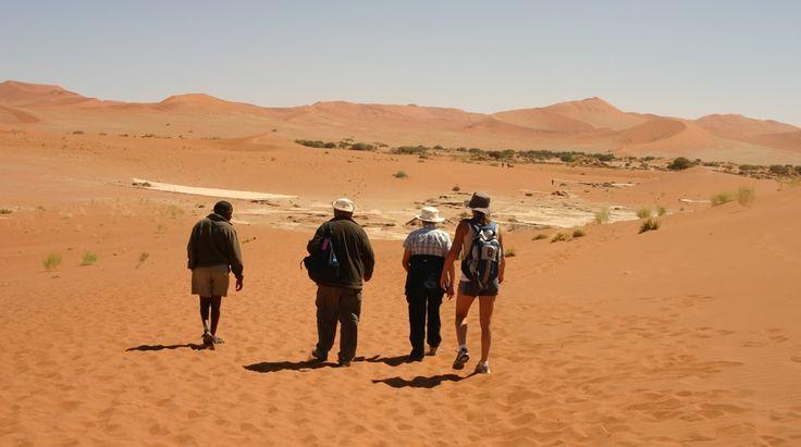 Classic Namibia Safari | Bench Africa