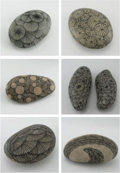 Drawings on stones. These remind me of Petoskey stones, fossilized coral found in Michigan. #Petoskey_Stones