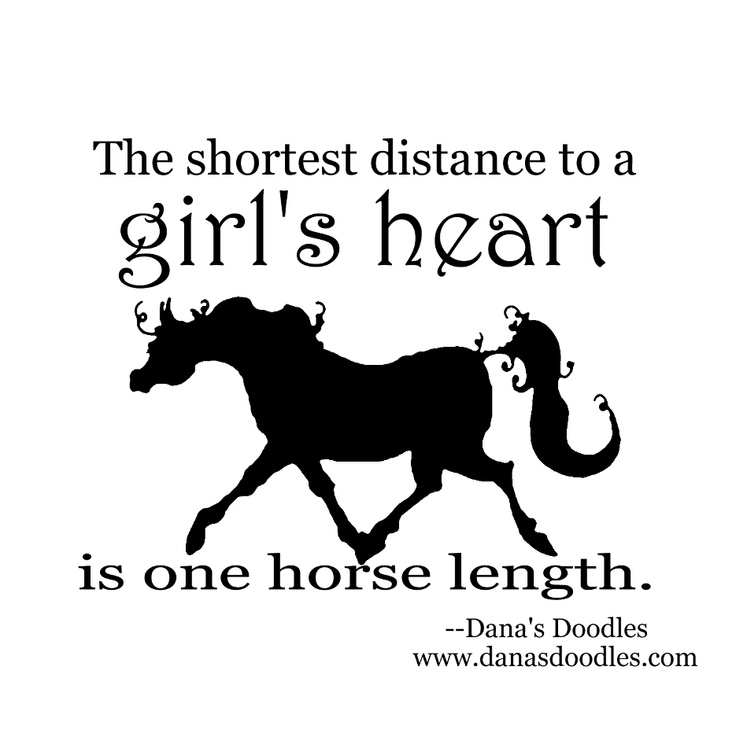 300 Best Images About Horse Quotes On Pinterest