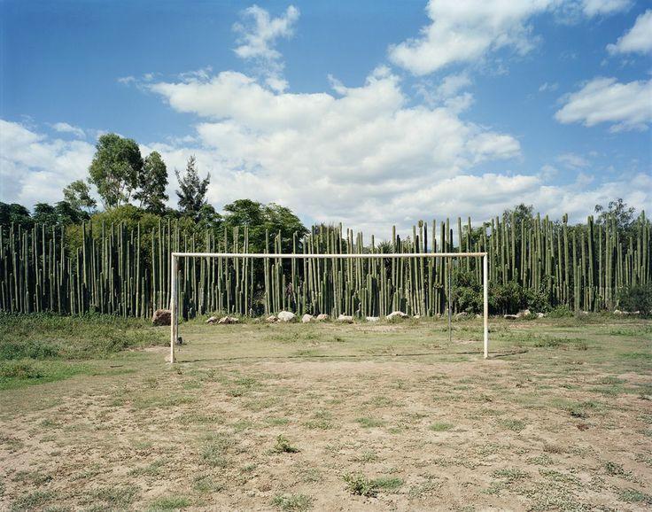 Erwan FICHOU ,  Les orgues de Teitipac, 2007, Tirage argentique numérique Lambda satiné, 40 x 51 cm, Édition de 50