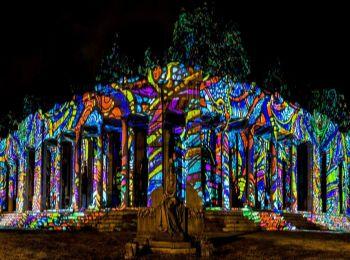 Night Projection fényfestés - Múzeumok éjszakája - Nemzeti sírkert
