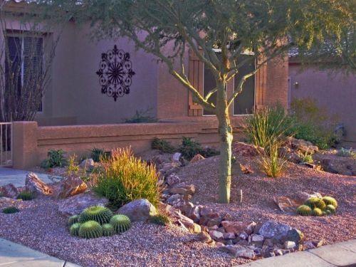 Desert Landscaping Ideas For Front Yard Desert Theme Front Yard