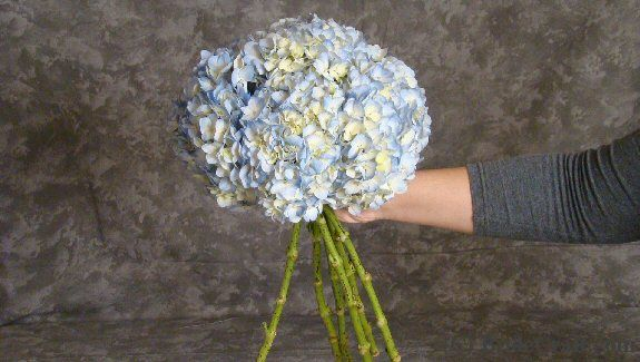 make your own hydrangea bouquet. this just seems stupid-easy!