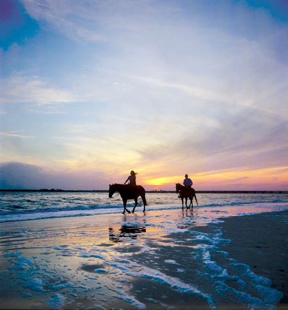 Amelia Island State Park is one of the few places you can ride horses on the beach in Florida. Yup. Andrew... let's start packing our things :)