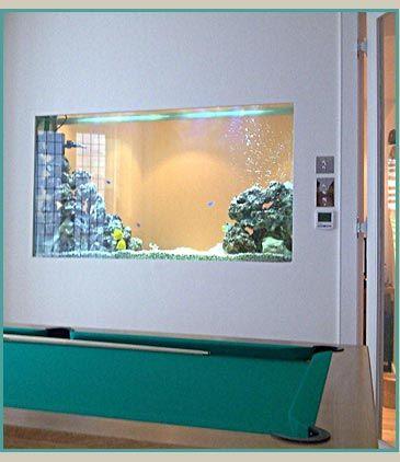 custom built marine through wall fish tank