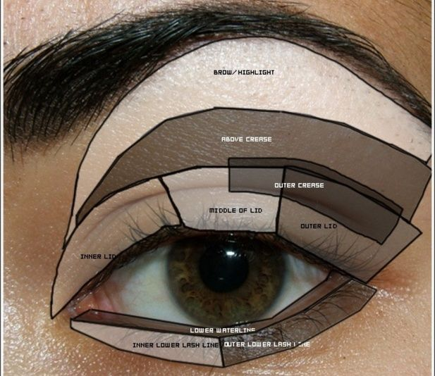 image.jpgHeres a full description on how and were to put eyeshawdows for the perferction look  First with the browbone then the crease the inner corner the outta corner and undereye make u