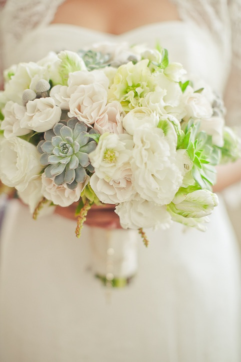 Love the idea of succulents in a bouquet of soft, white/blush peonies!White Flower, Bridal Bouquets, White Photography, Wedding Bouquets, Bridal Flower, Colors Schemes, White Bouquets, Lights Colors, Succulent Bouquets