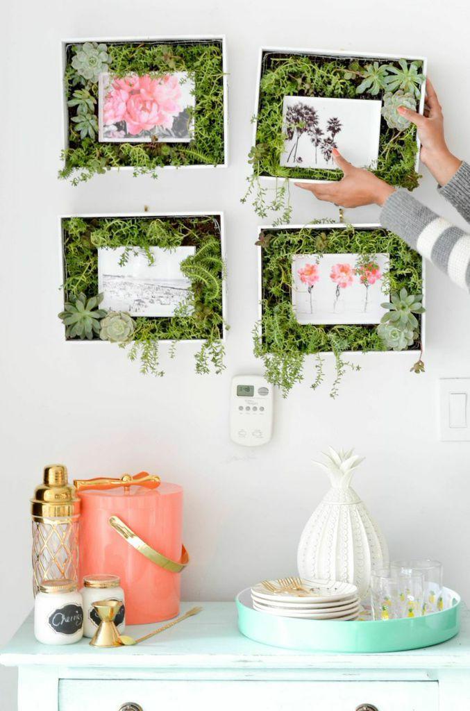 DIY Succulent Frame: