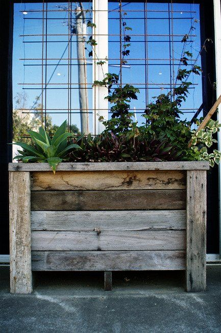 Pallet wood planter box - display exotic plants and also use as a screen #palletgardenfurniture