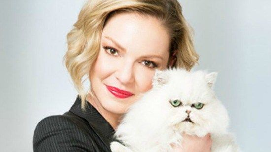 Katherine Heigl, actress, with her mother started the Jason Debus Heigl Foundation to help abused, unwanted felines.