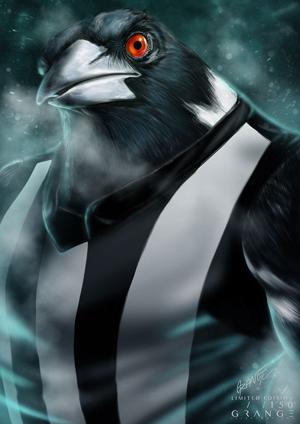 'The Infamous Collingwood Magpie' Print