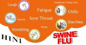 How to Prevent Swine Flu (H1N1) #Virus – #Natural #Ayurvedic #Home #Remedies for #Swine #Flu