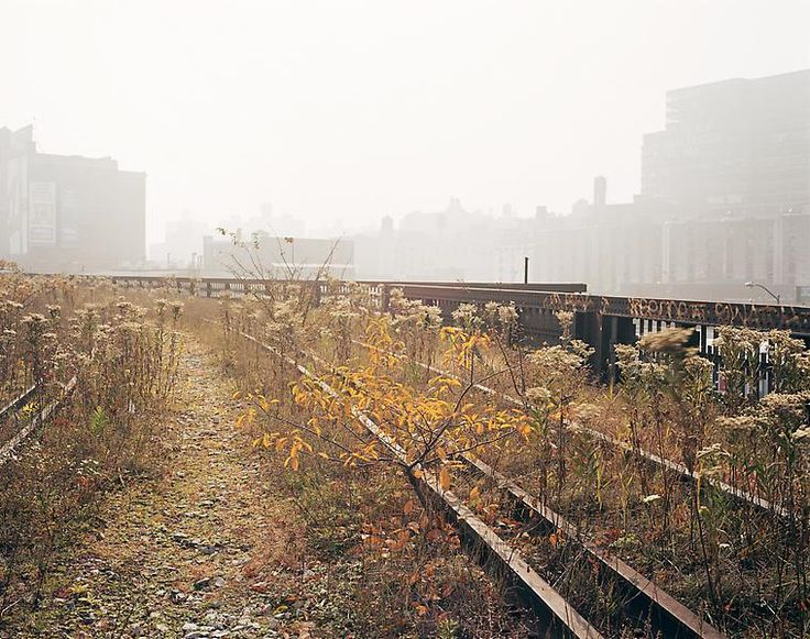 Joel Sternfeld, October 2000 from High Line [rest in power, old High Line]