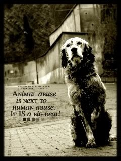 Animal abuse is next to human abuse - it is a big deal!