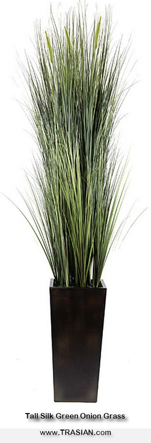 "Enhance the appearance of your home with ""True-to-Life Silks"" from TRASIAN. This beautiful decorative tall real looking artificial green onion grass can be made in various sizes and colors and can be ordered in bulk from China at factory direct prices from www.TRASIAN.com, including quality control, customization, a huge variety of modern or contemporary pots, and non-profit shipping logistics to your door steps."