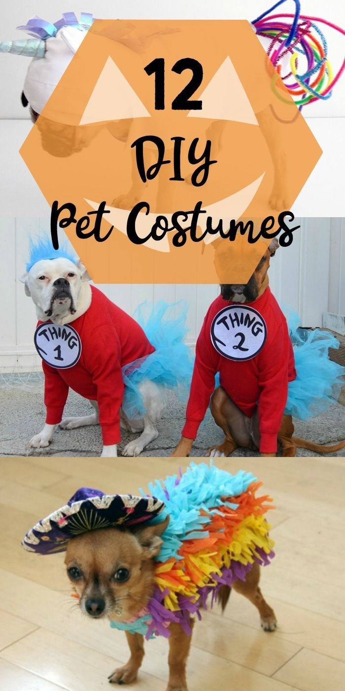 12 Diy Pet Costumes Dog Gifts For People Pet Halloween