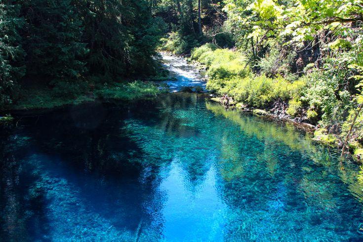 Best 25 Tamolitch Pool Ideas On Pinterest Blue Pool Oregon River Trail And 3 Pools Oregon