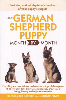 German Shepherd Training - The Most Essential Techniques