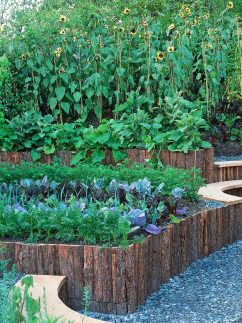 Raised Bed Gardening Ideas find this pin and more on garden Raised Bed Gardening Ideas Hgtvgardens I Love The Added Benches To Sit On While