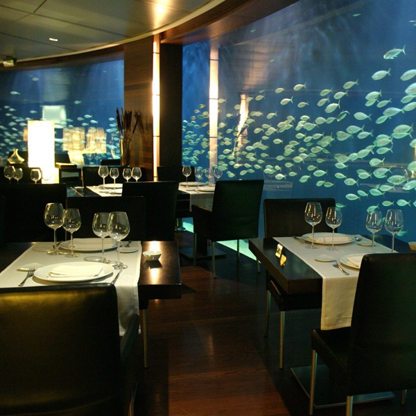 9 best seafood restaurant images on pinterest restaurant for Aquarium valencia bar