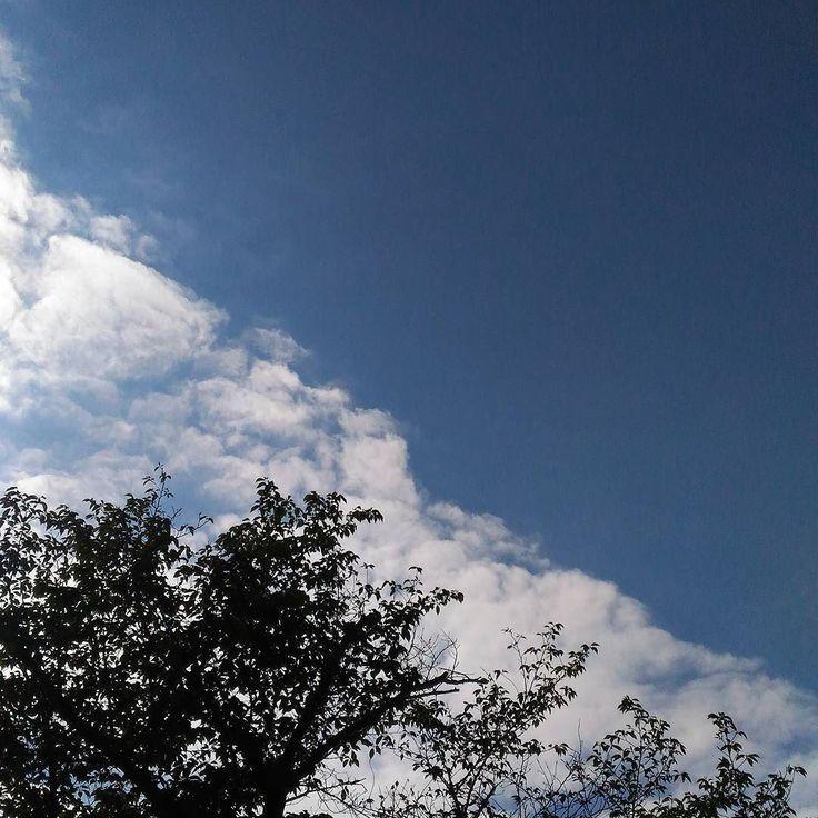 おはようございますいい天気の土曜日暑くなりそうです #sky #cloud #空 #雲 #イマソラ #goodmorning #おはよう