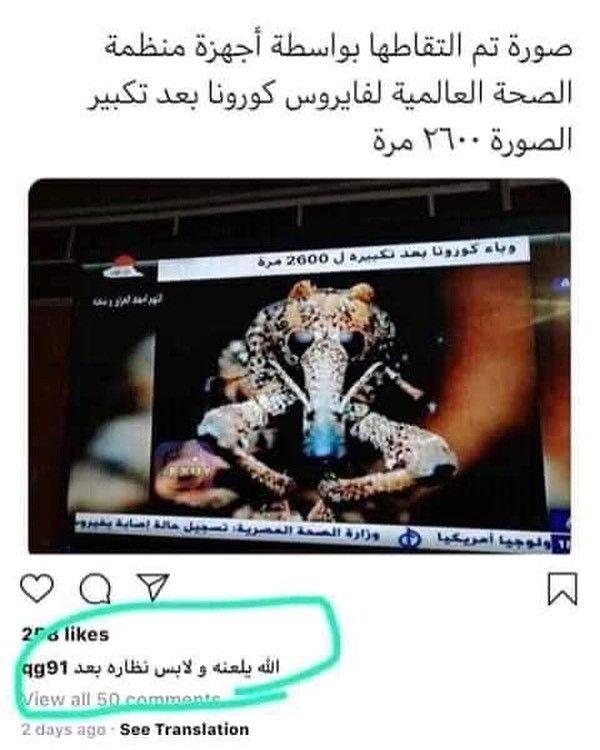 Pin By لا اله الا الله محمد رسول الله On Hhhhhh Fun Quotes Funny Funny Joke Quote Funny Arabic Quotes