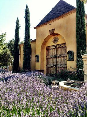 Tips and Vineyards of Santa Barbara Wine Country #rosecoastrealty #andrewrose #realestate www.rosecoastrealty.com