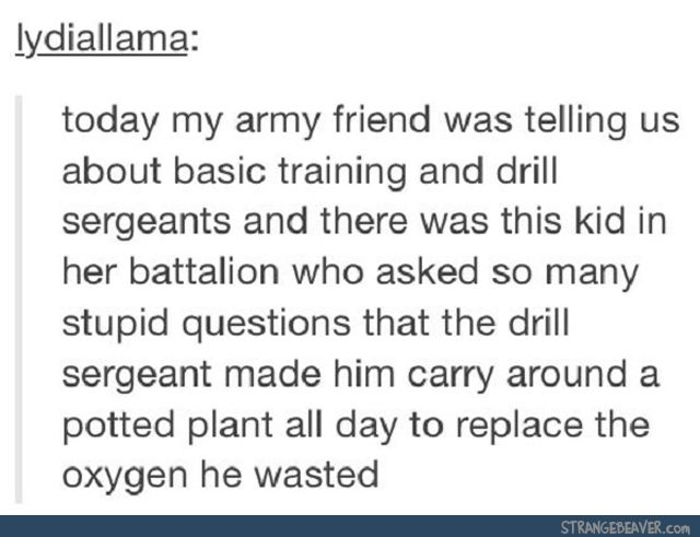 us army drill sergeant school