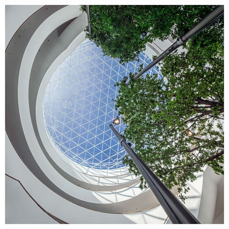 Indoor greenery and vaulted glass roof of Novo Nordisk HQ, Denmark by Henning Larsen Architects. Photo by Jens Lindhe