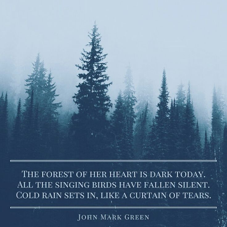Depression Quotes Garden: The 25+ Best Quotes About Rain Ideas On Pinterest
