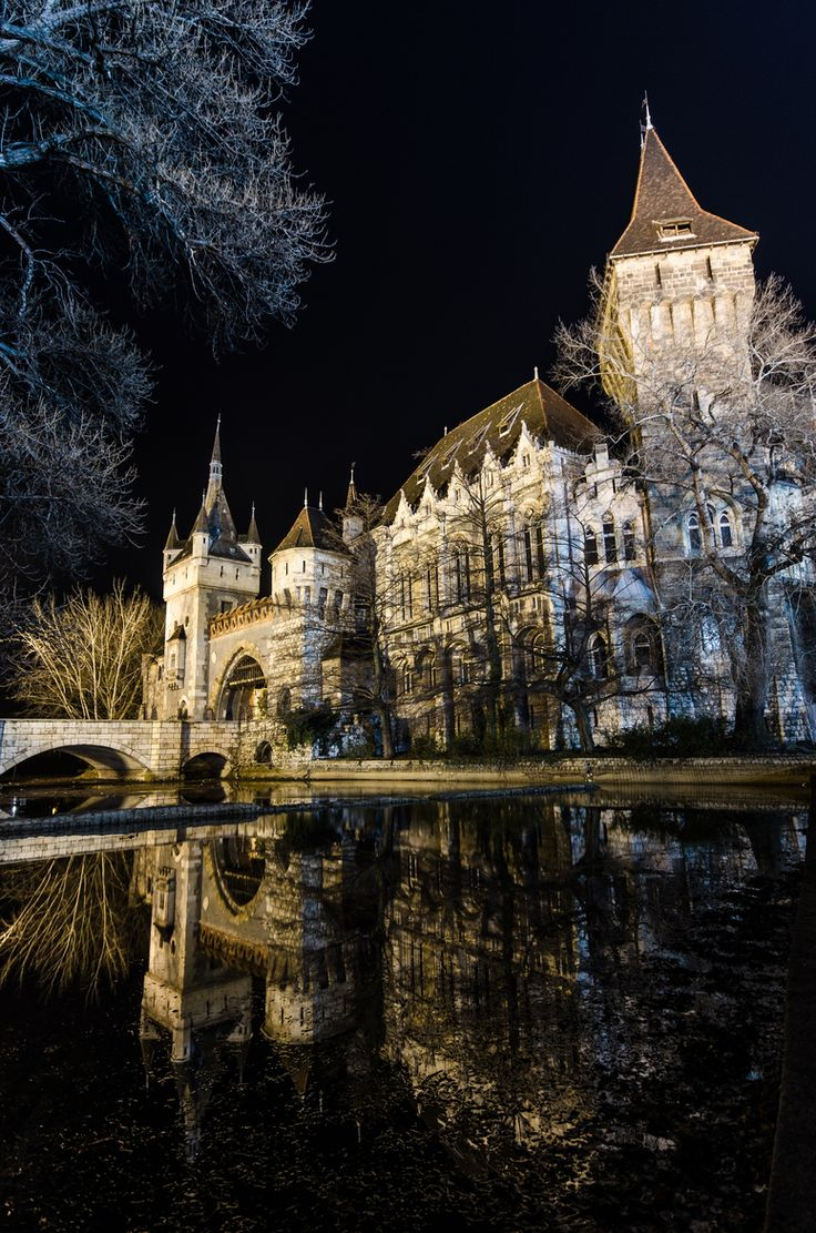 Vajdahunyad Castle, Budapest, Hungary   by santiagain on 500px