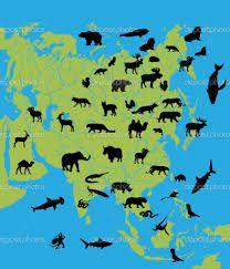 Resultado de imagen para asia animales