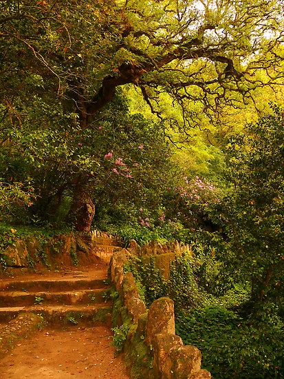 Monserrate palace gardens, romantic Sintra #Portugal #PortugalPowerFlower