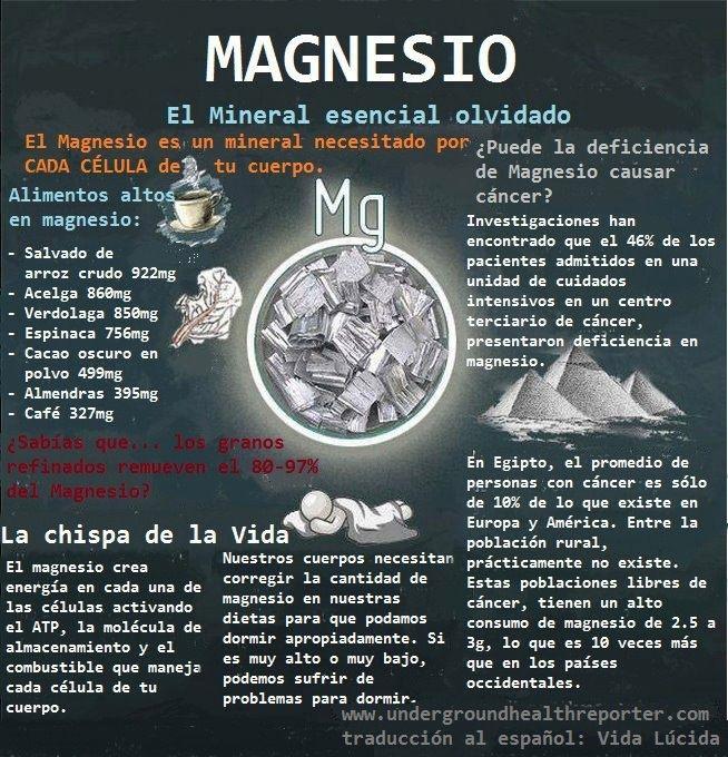 El magnesio, un mineral fundamental para la vida. #magnesio #infografía #infographic