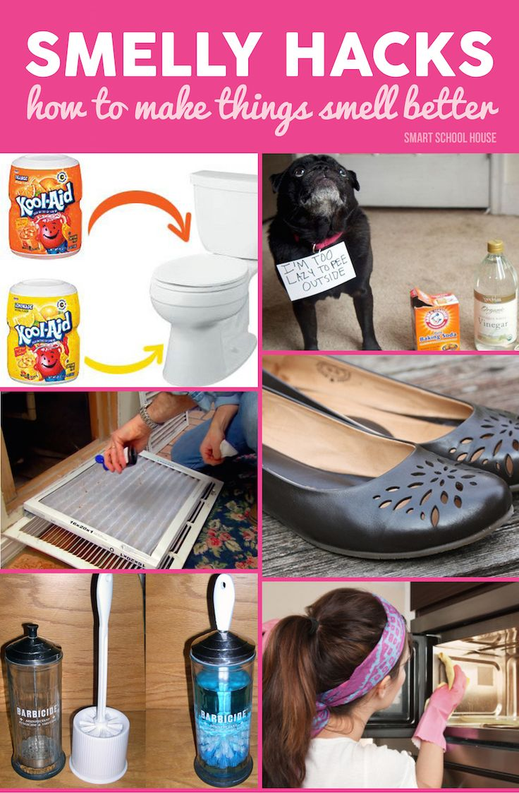 Got a smell in your house? Try one of these smart DIY ideas to get rid those smelling things.
