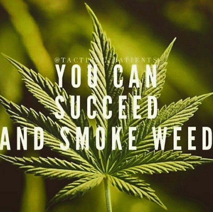 Lucky Dube Wallpaper Quotes 54 Best Weed Quotes Images On Pinterest Truths Cannabis