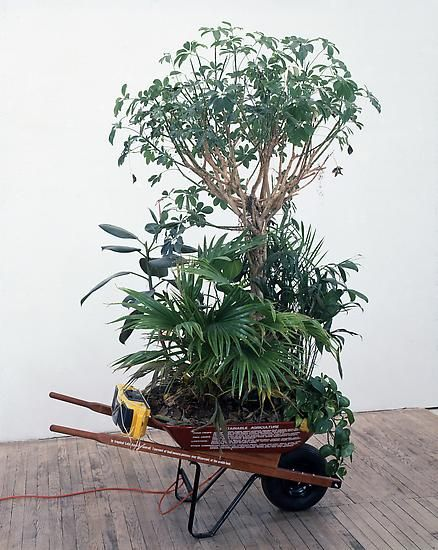 """Tropical Rainforest Preserves (Mobile Version) from Wheelbarrows of Progress, Mark Dion y William Schefferine (1991) 