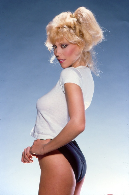 judy landers measurements
