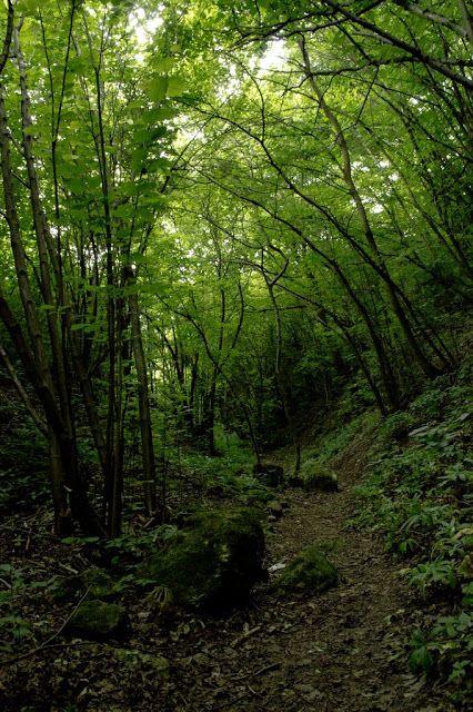 Történetek képekkel: Fundoklia völgy