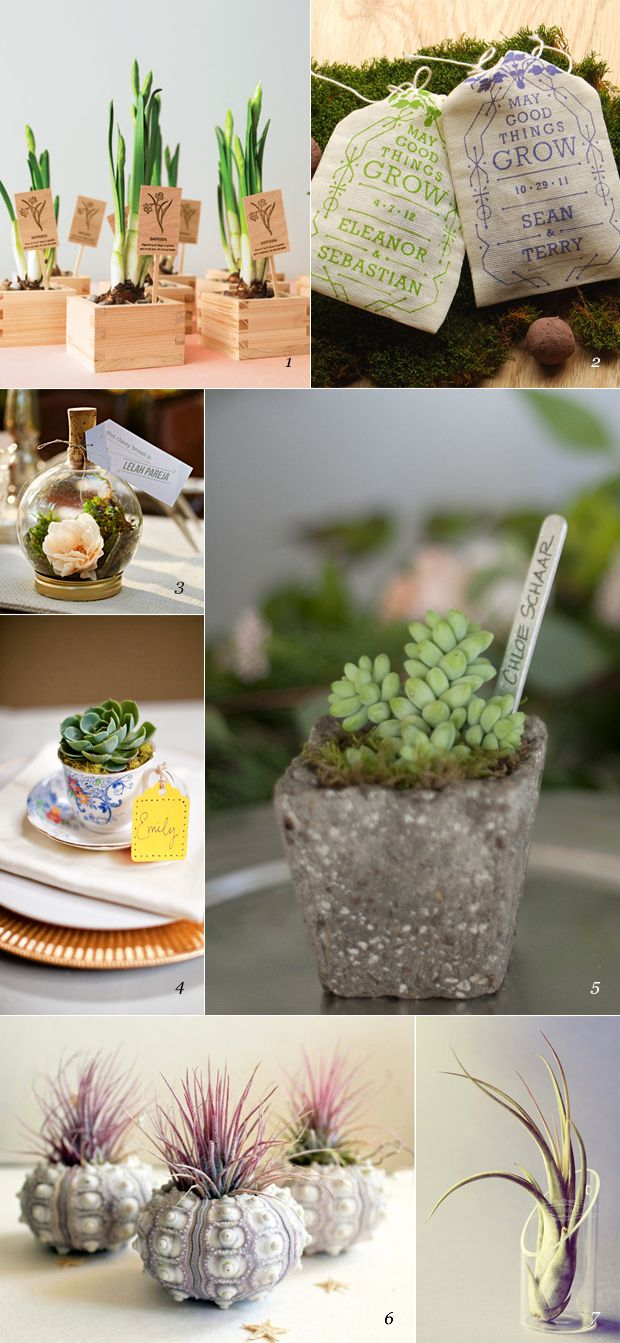 Wedding favors ideas tumblr - Plant Wedding Favors Featured On Dearestnature Com