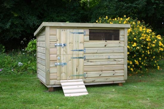 78 images about duck houses and ideas on pinterest for Duck and goose houses