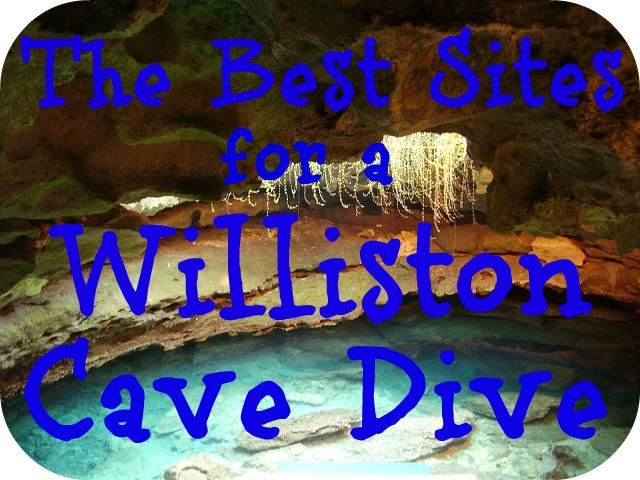 While there is no shortage of cave diving destinations in Florida, a Williston cave dive offers a variety of sites that are as inspiring as they are lovely. Here are just a few of the most popular. http://aquaviews.net/scuba-dive-destinations/sites-williston-cave-dive/
