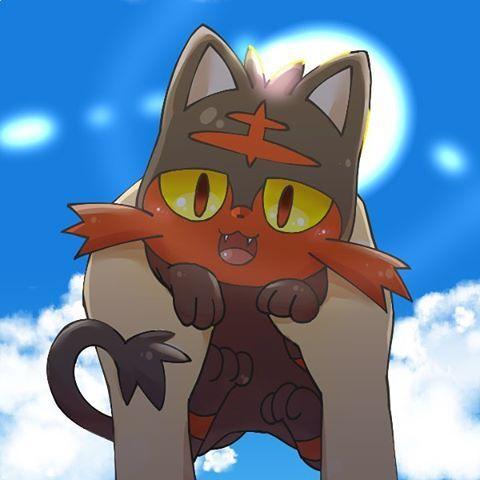 11.18.2016 Pokemon Sun & Moon Litten #pokemon #sunmoon #litten